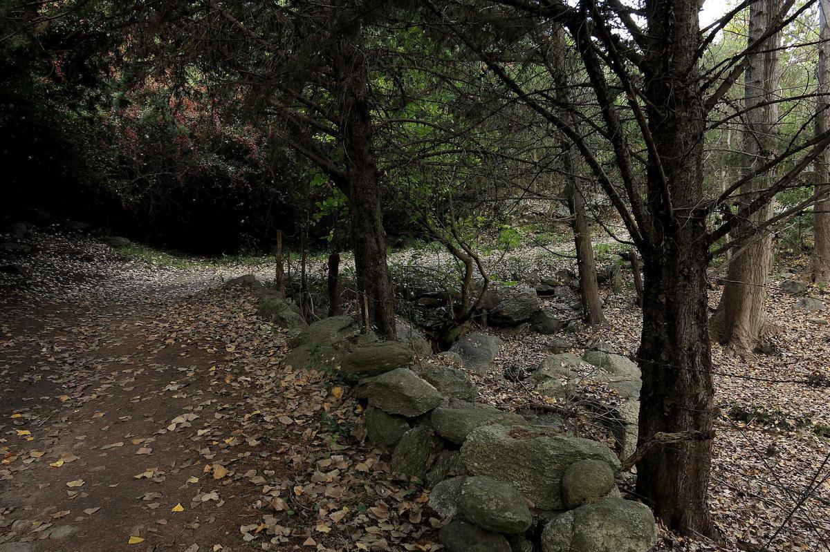 Foto Terreno en Venta en  Villa De Las Rosas,  San Javier  Terreno en Las Chacras, Villa las Rosas, Traslasierra, Provincia de Córdoba (lote113)