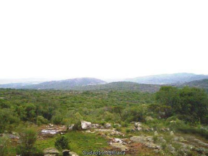 Foto Chacra en Venta en  Aiguá ,  Maldonado  Campo en las sierras, Aiguá