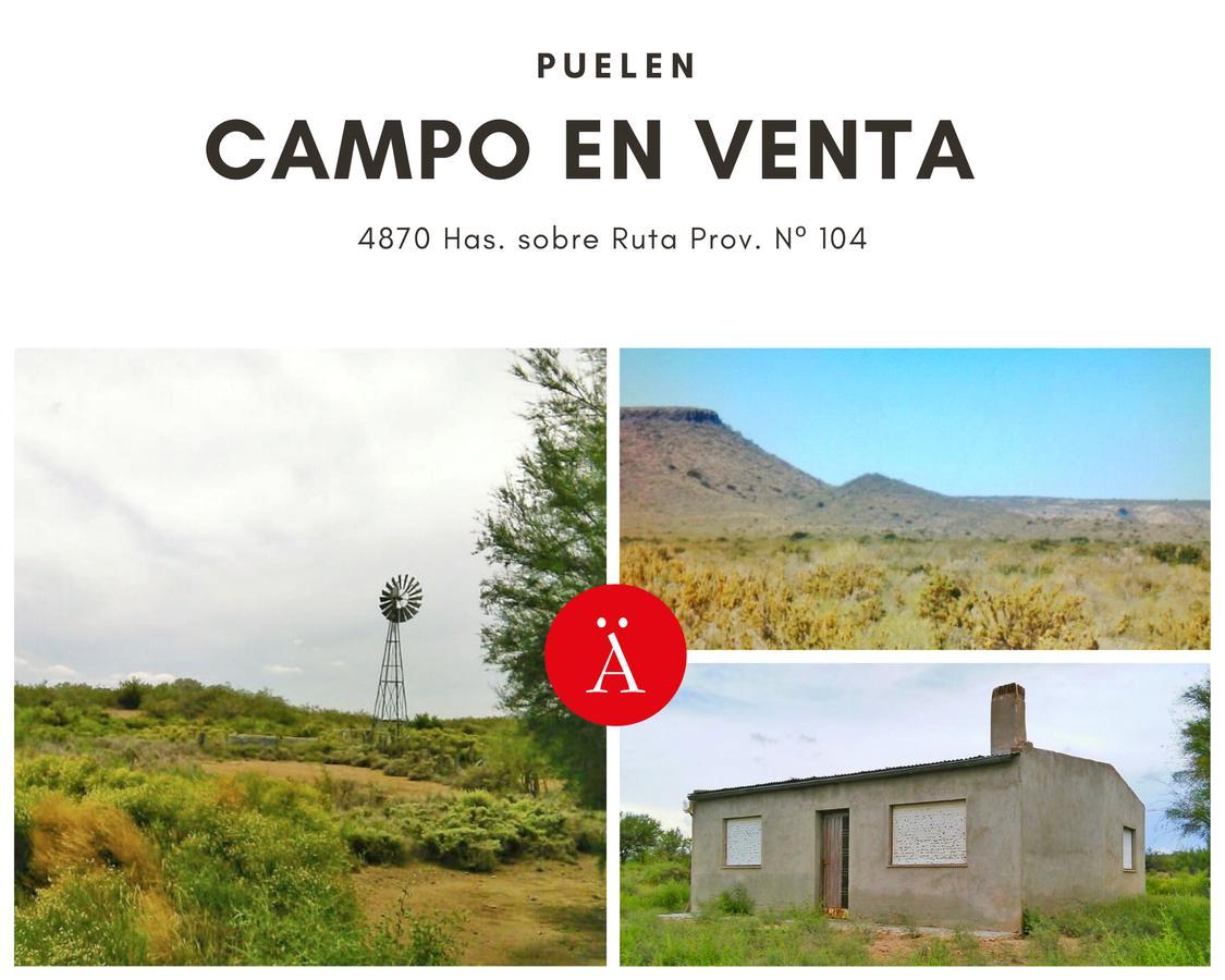 Foto Campo en Venta en  Puelen ,  La Pampa  Puelen