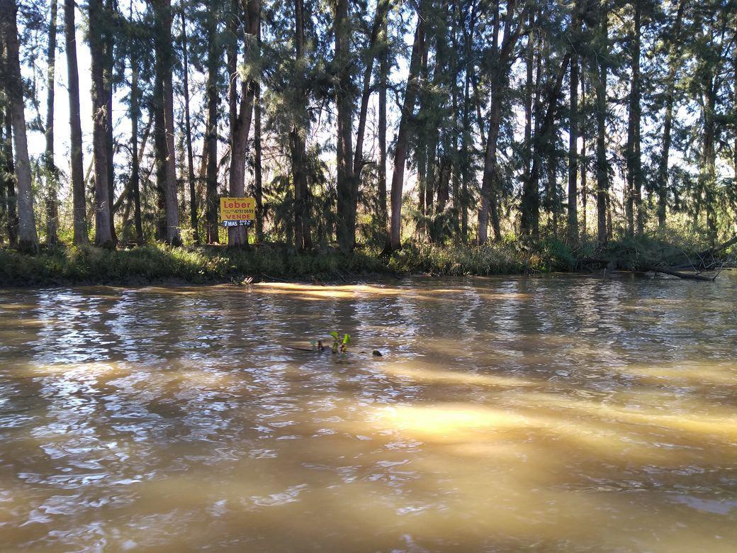 Foto Quinta en Venta en  Caraguata,  Zona Delta Tigre  Caraguatá 7 ha.
