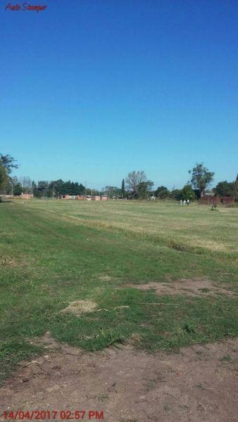 Foto Campo en Venta en  General Rodriguez,  General Rodriguez  RUTA 6 KM al 100
