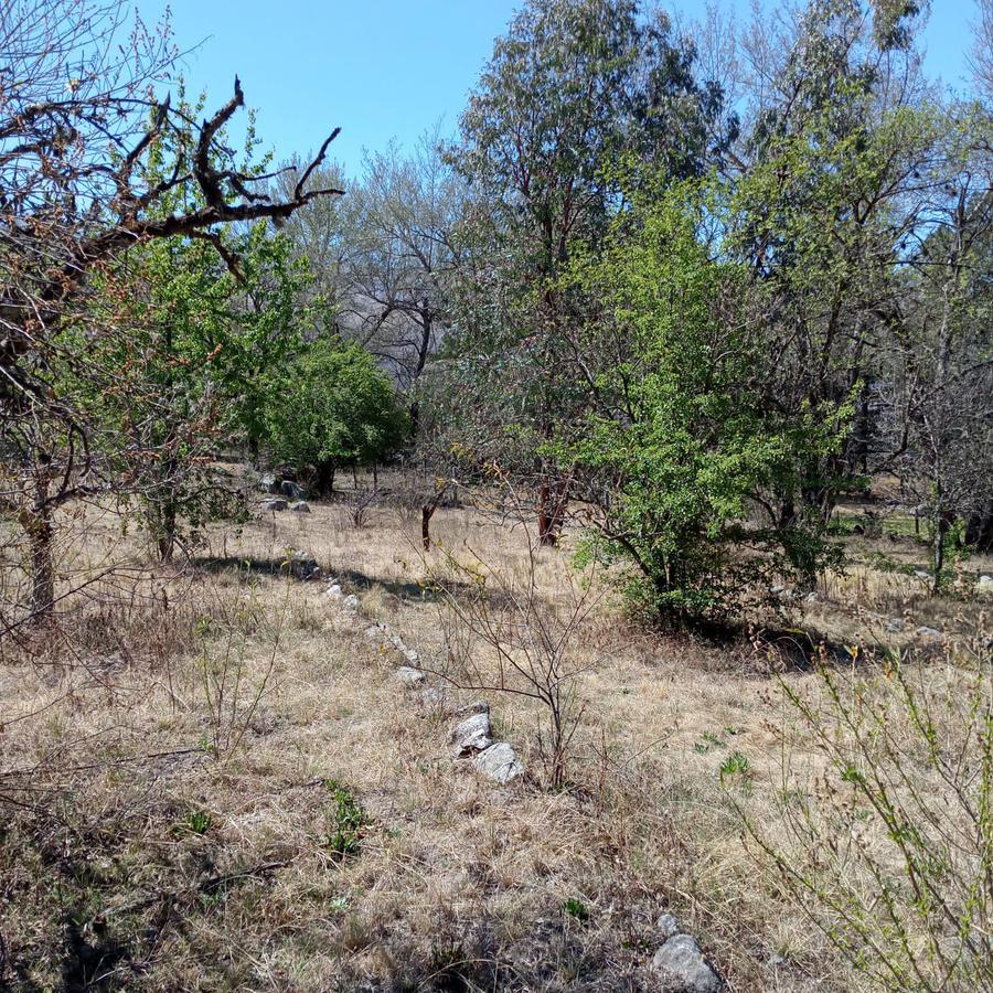 Foto Terreno en Venta en  La Quebradita,  Tafi Del Valle  Tafi del Valle