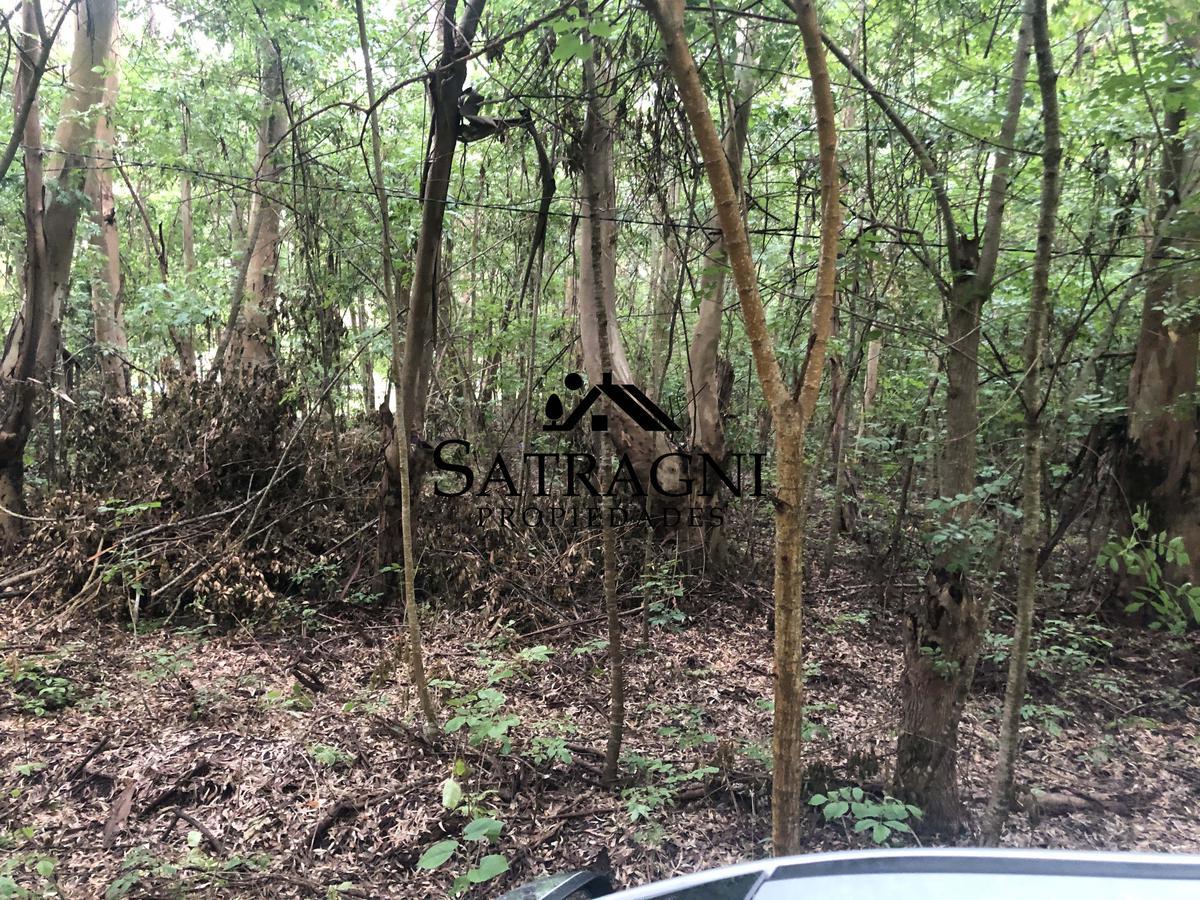 Foto Terreno en Venta en  Barrio Los Bosquecitos,  Coronel Brandsen  Ruta al 215 Altura km 39.5