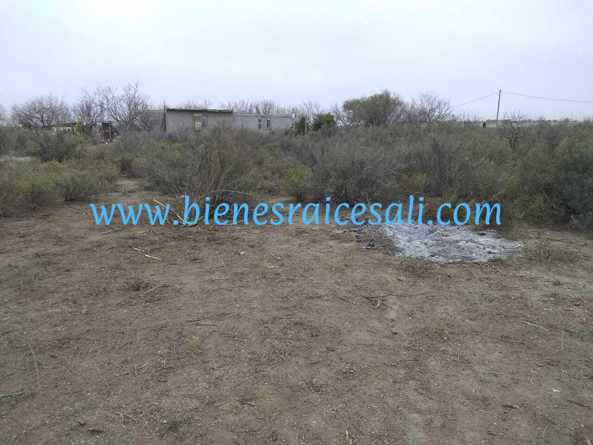 Foto Terreno en Venta en  Villa de Fuente,  Piedras Negras  REMATO terreno para quinta, Villa de Fuente