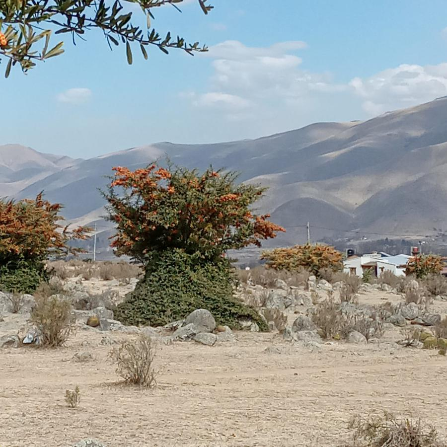 Foto Terreno en Venta en  Tafi Del Valle ,  Tucumán  LA COSTA 1