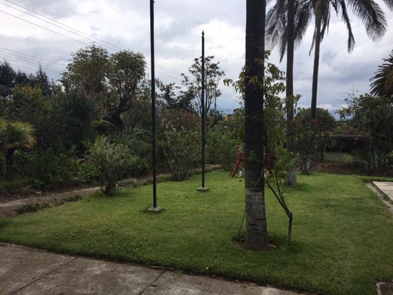 Foto Quinta en Alquiler en  Pifo,  Quito  Preciosa Quita de renta en Pifo, con huerta, piscina