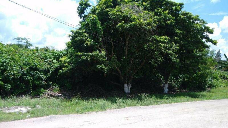 Foto Terreno en Venta en  Bacalar ,  Quintana Roo  BACALAR SOBRE EL LIBRAMIENTO