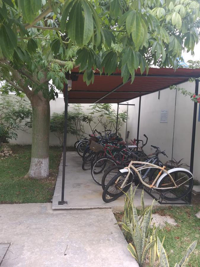 Foto Departamento en Renta en  Real Ibiza,  Solidaridad  Departamento en RENTA, a unos pasos de Universidad Riviera y Public Market
