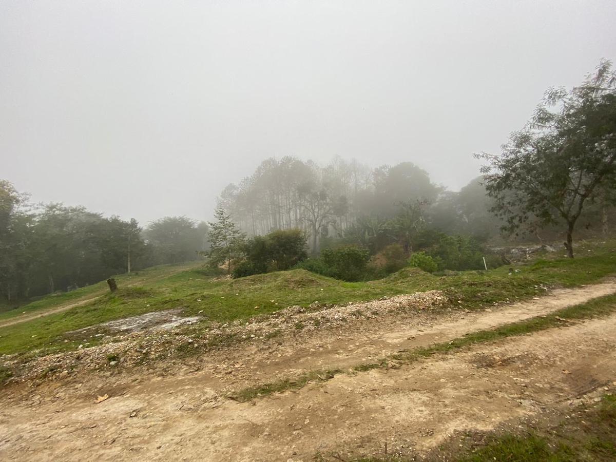 Foto Bodega en Renta en  Coatepec ,  Veracruz  Coatepec