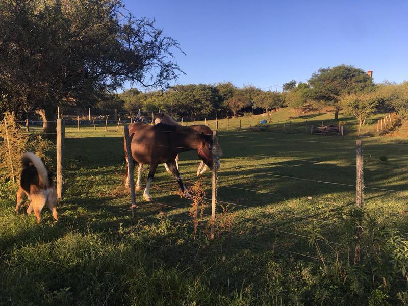 Foto Terreno en Venta en  La Falda Del Carmen,  Santa Maria  Los Encantos lote 14 mz 13