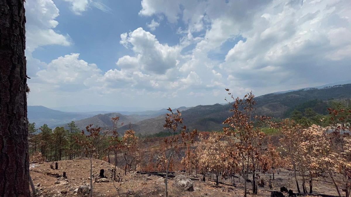 Foto Terreno en Venta en  Miralago,  Tegucigalpa  Terreno con vista en Miralago, Hatillo, Tegucigalpa