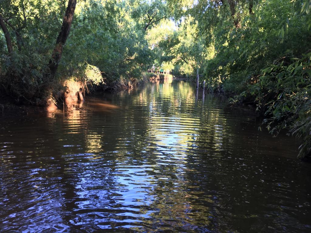 Foto Terreno en Venta en  Parana De Las Palmas Tigre,  Zona Delta Tigre  rio parana de las palmas