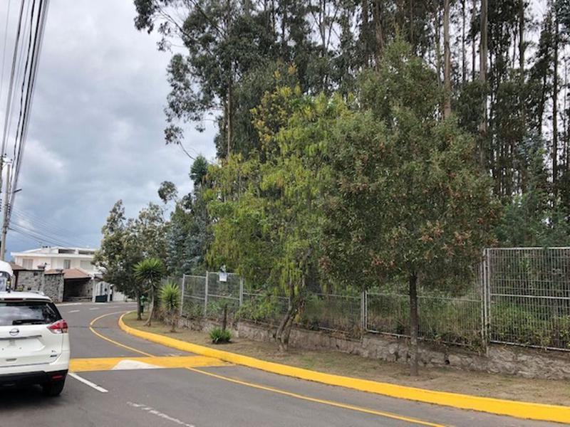 Foto Terreno en Venta en  Monteserrín,  Quito  Terreno hermoso ubicado  Urbanización Campo Alegre