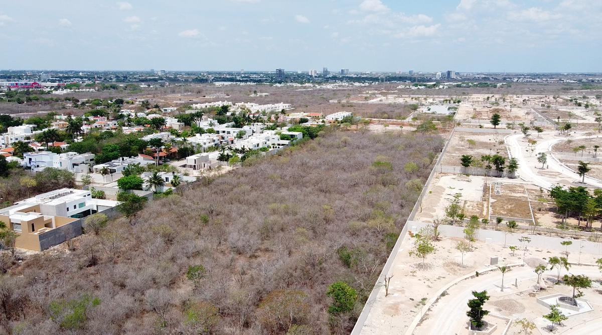 Foto Terreno en Venta en  Pueblo Cholul,  Mérida  terreno en margaritas cholul, junto a Cittadela  ideal para proyecto de desarrollo inmobiliario