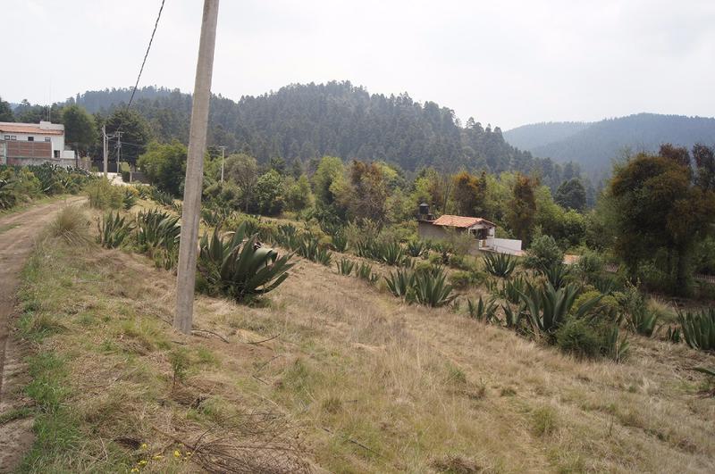 Foto Terreno en Venta en  Cañada de Alférez,  Lerma  Cañada de Alferez, Ler. Edo. Mex. Hermoso Terreno en zona boscosa con hermosas vistas