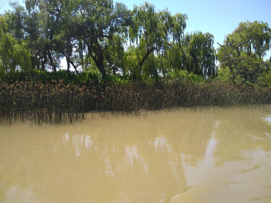 Foto Terreno en Venta en  Dorado,  Zona Delta Tigre  Arroyo Dorado Parcela 191 y 192