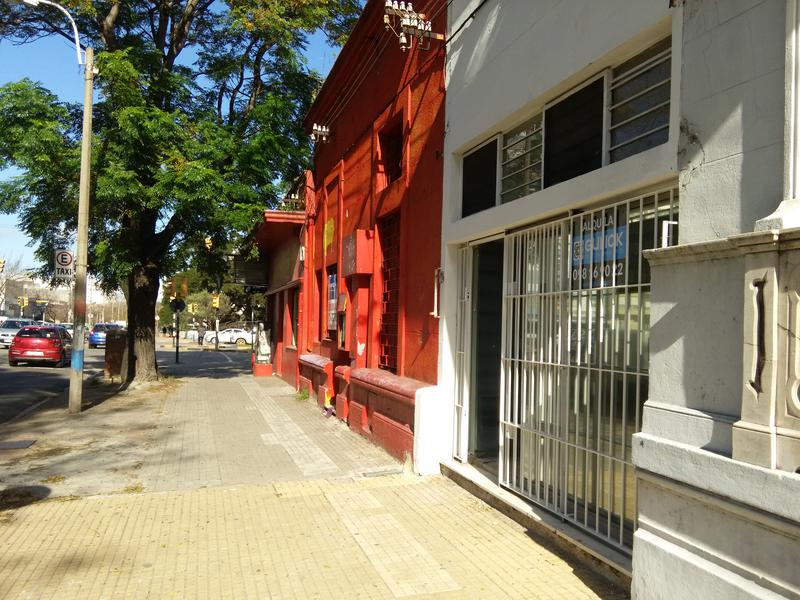 Foto Departamento en Alquiler en  La Blanqueada ,  Montevideo  La Blanqueada