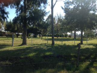 Foto Campo en Venta en  Las Flores ,  Interior Buenos Aires  Las Flores, a 3 km de Ciudad