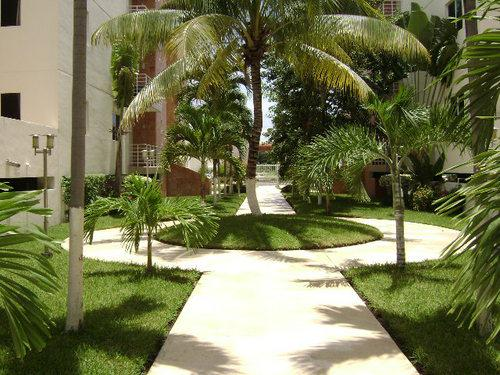 Foto Departamento en Venta | Renta en  Cancún Centro,  Cancún  Palma del Sol Sm 17 Venta o Renta