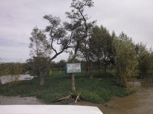 Foto Terreno en Venta en  Urion,  Zona Delta Tigre  Samek Propiedades: Urion Parcelas 51 y 52