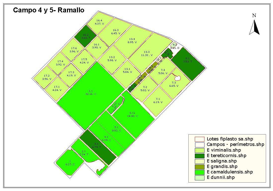 Foto Campo en Venta en  Ramallo,  Ramallo  200 Has  en Ramallo