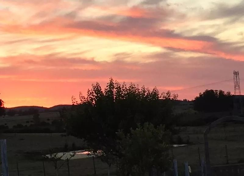 Foto Campo en Venta en  San Carlos ,  Maldonado  Campo/Chacra Ruta39, a 6 km San Carlos