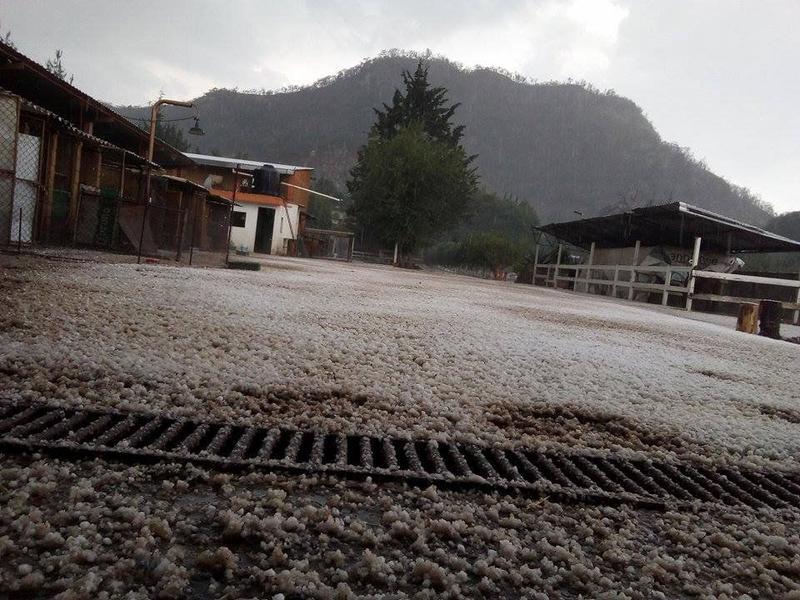 Foto Departamento en Renta | Renta temporal en  Malinalco,  Malinalco  San Isidro Amola Ocuilan estado de Mexico