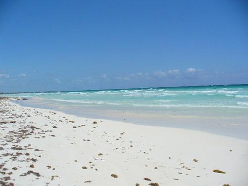 Foto Campo en Venta en  Chetumal ,  Quintana Roo  Chetumal