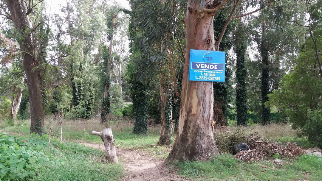 Foto Terreno en Venta en  Bosque Peralta Ramos,  Mar Del Plata  De la Maza al 4200