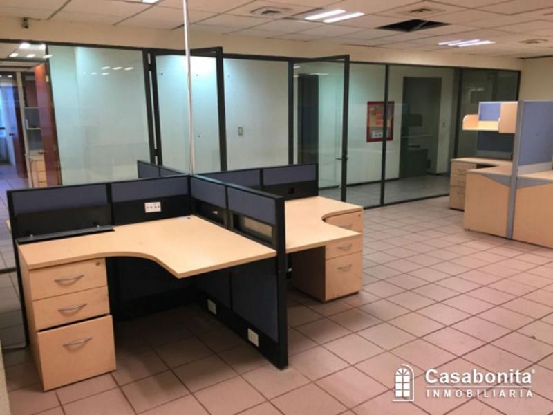 Foto Oficina en Renta en  Polanco,  Miguel Hidalgo  Magníficas Oficinas en Renta en Polanco 652 m2