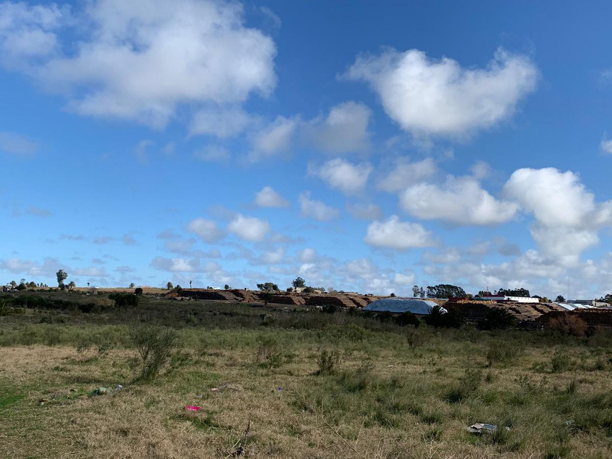 Foto Terreno en Venta en  Montevideo ,  Montevideo  Burdeos 2900, uruguay , montevideo