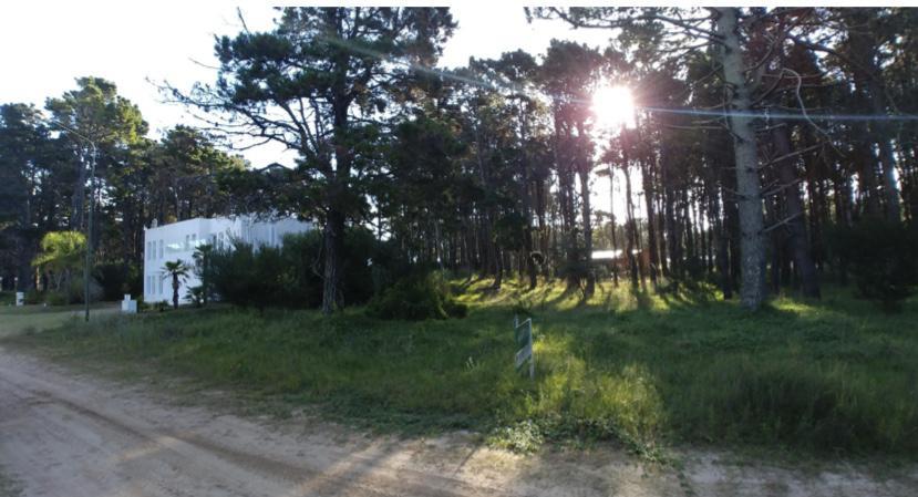 Foto Terreno en Venta en  Pinamar ,  Costa Atlantica  Av Shaw 2700, Pinamar