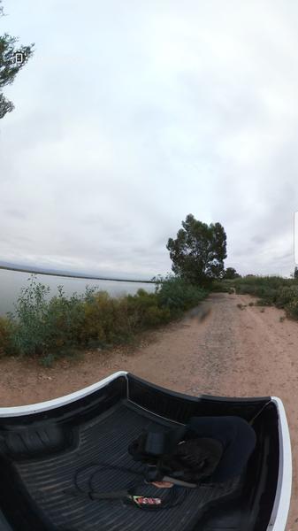 Foto Fincas en Venta en  Lavalle ,  Mendoza  Ruta 40