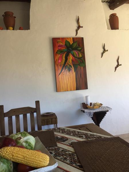 Foto Casa en Venta en  Tafi Del Valle ,  Tucumán  El Pelado
