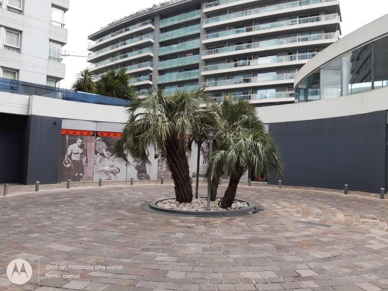 Foto Local en Alquiler en  Puerto Madero,  Centro (Capital Federal)  Lola Mora  al 400