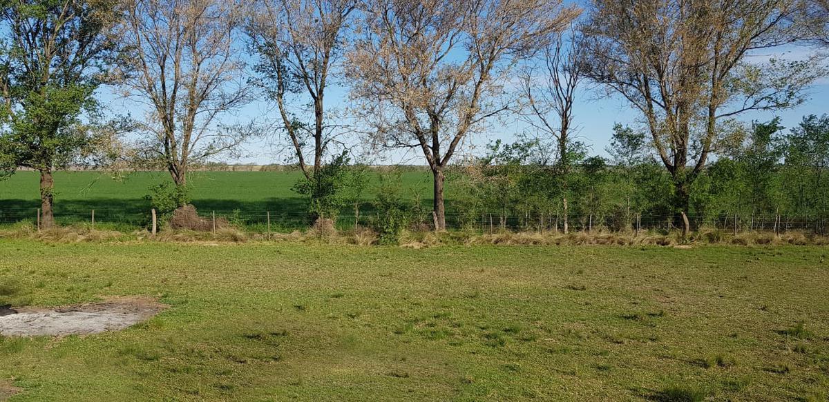 Foto Campo en Venta en  Anguil,  Capital   Anguil