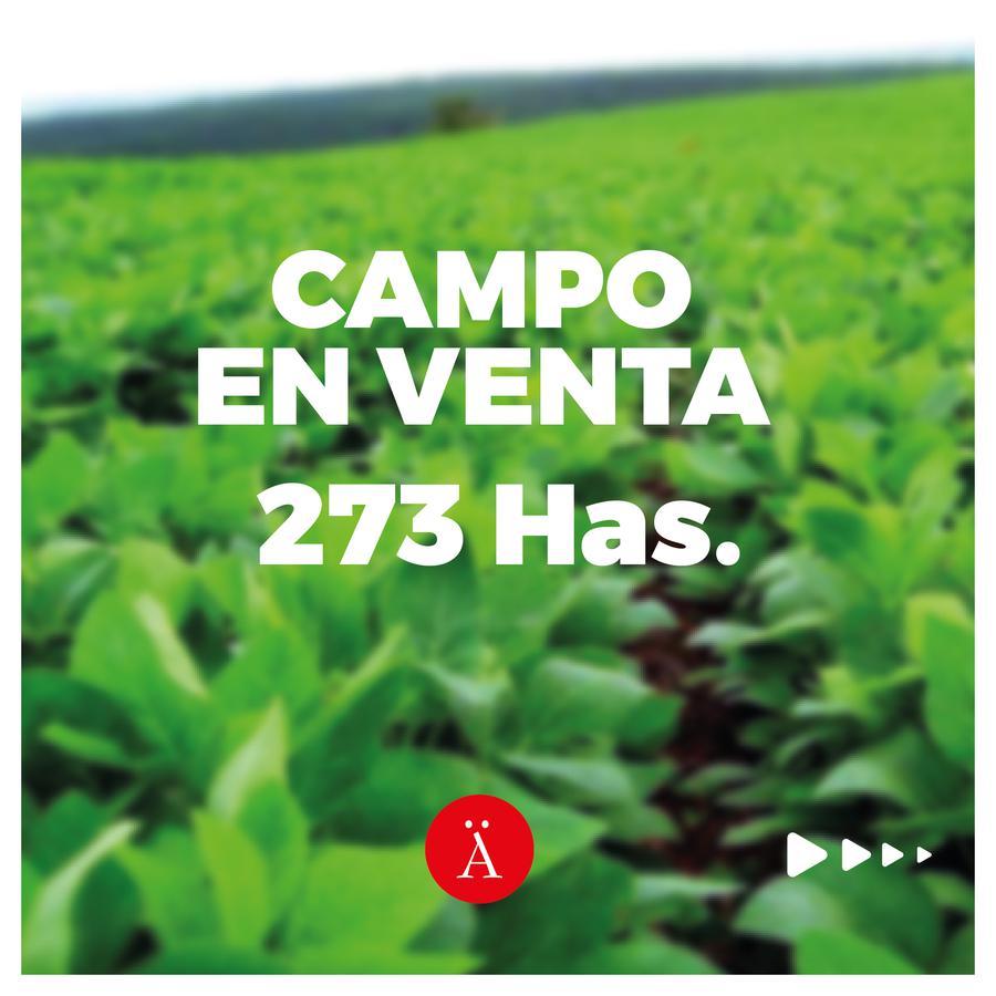 Foto Campo en Venta en  Tres Algarrobos,  Carlos Tejedor  Tres Algarrobo