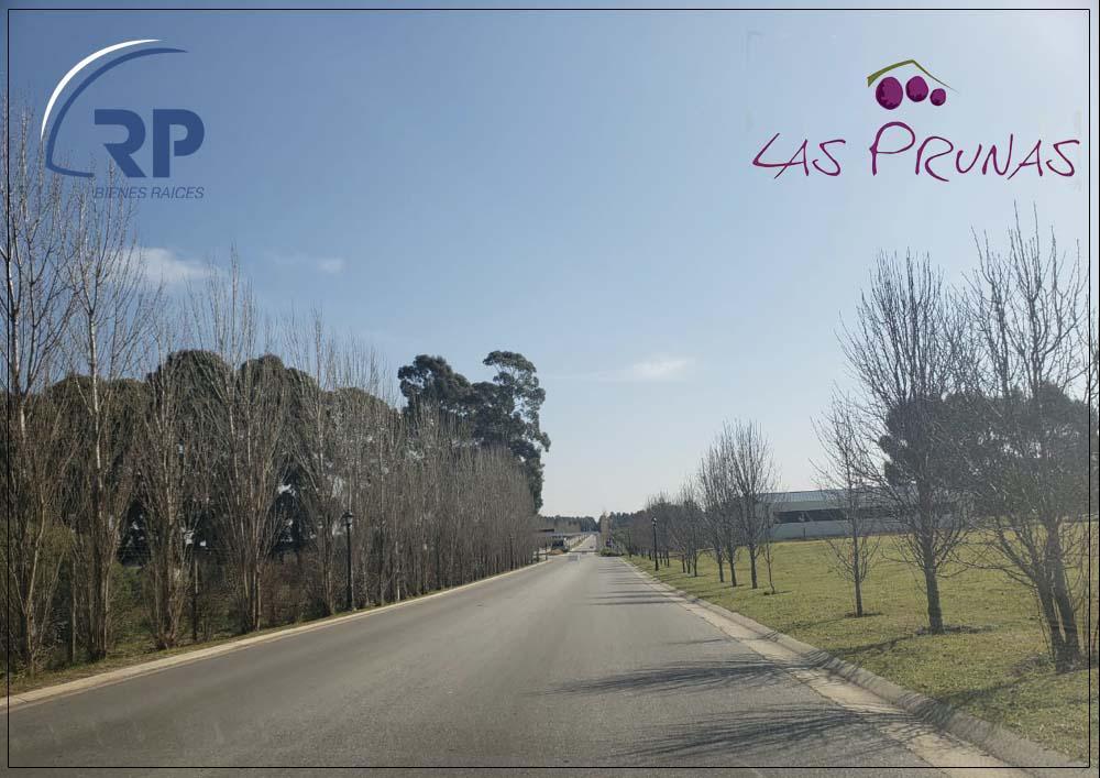 Foto Terreno en Venta en  las Prunas,  Mar Del Plata  Jorge Newbery al 4500