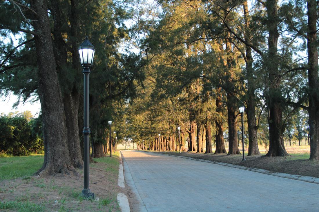 Foto Terreno en Venta en  Fighiera,  Rosario  Ruta Provincial 21 Kilómetro 25