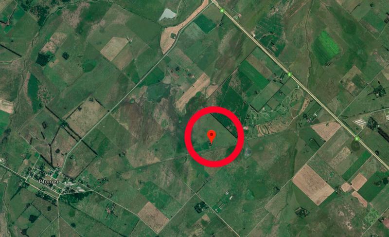 Foto Campo en Venta en  Plomer,  General Las Heras  Plomer