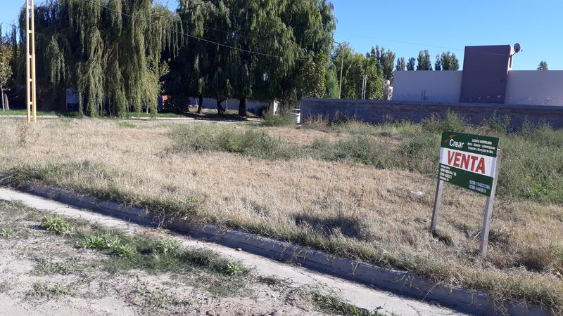 Foto Terreno en Venta en  Villa Regina,  General Roca  TERRENO LOTEO DOÑA MARIA