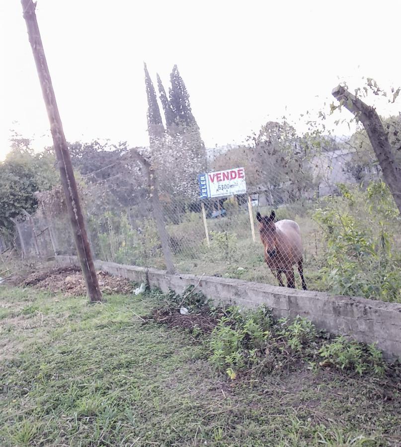 Foto Terreno en Venta en  Ruta Provincial 338,  Yerba Buena  RUTA al 300