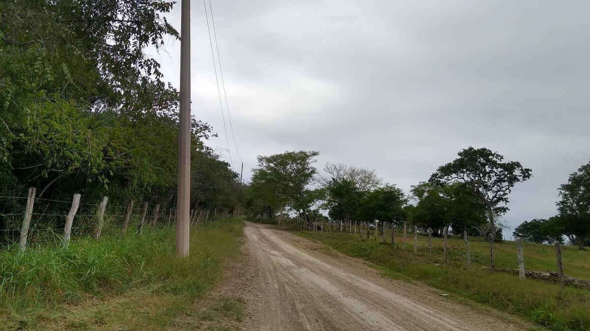 Foto Terreno en Venta en  Rancho o rancheria Nuevo Chicayan,  Tempoal  Rancho en Venta en Veracrúz para producción de Madero o Ganadero, 100 Hectáreas