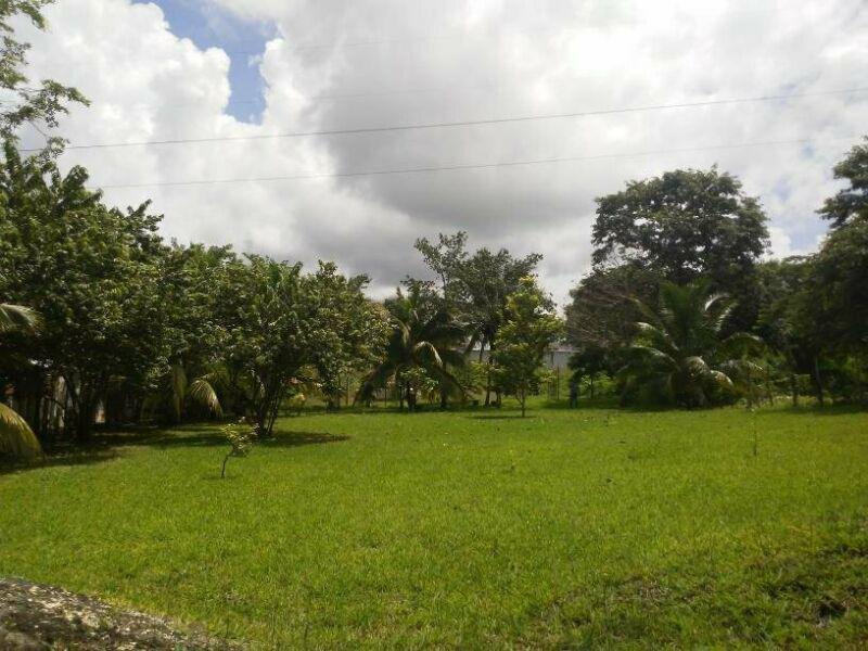 Foto Terreno en Venta en  Bacalar ,  Quintana Roo  PRECIOSO TERRENO IDEAL PARA INVERSIÓN EN BACALAR SOBRE AV 21