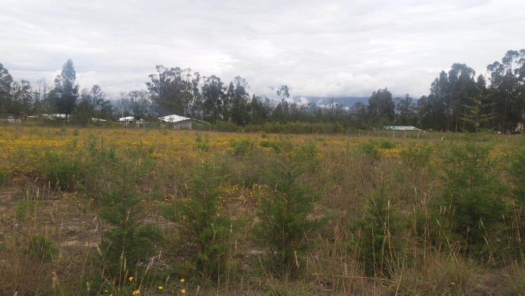 Foto Terreno en Venta en  Guayllabamba,  Quito  Malchingui