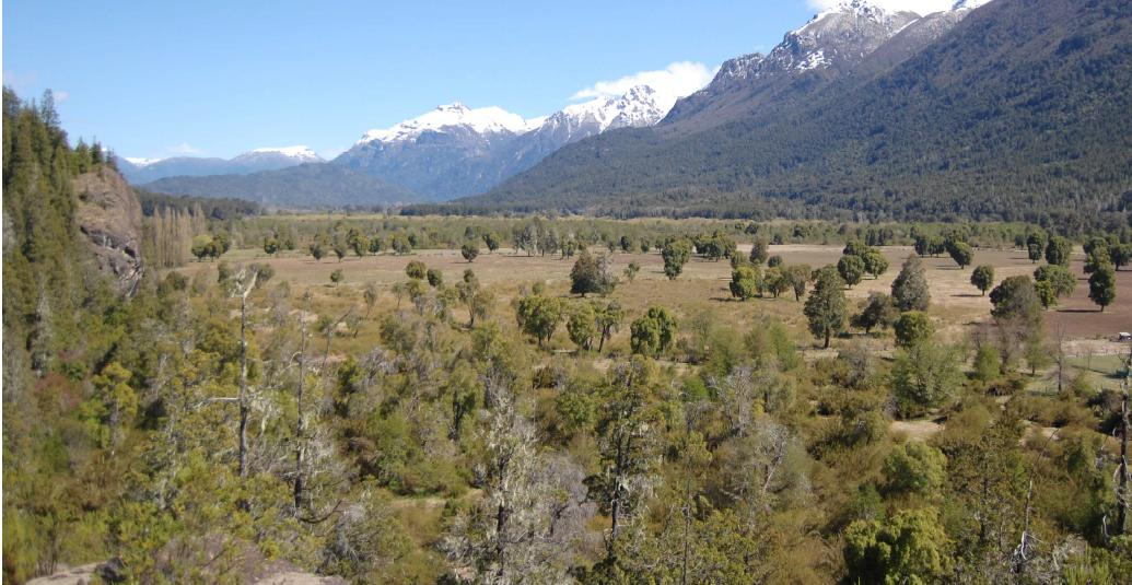 Foto Chacra en Venta en  El Manso,  Bariloche  Manso Inferior