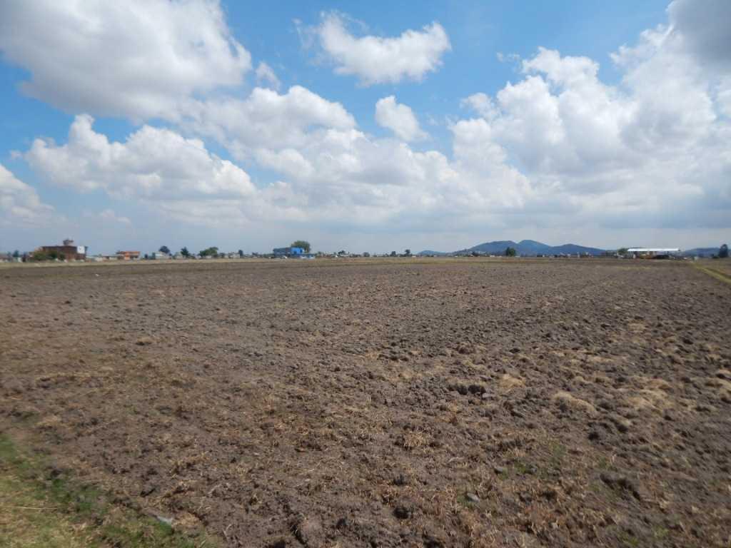 Foto Terreno en Venta en  Toluca ,  Edo. de México  TERRENO EN VENTA  CALLE PARCELA  1368Z1PA/4,  COLONIA CALIXTLAHUACA, TOLCA MÈXICO, C.P. 50280, TESH0170
