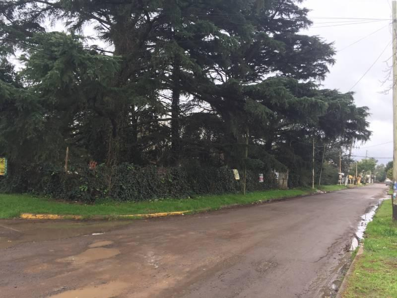 Foto Terreno en Venta en  San Miguel,  San Miguel  LAS MALVINAS al 2500