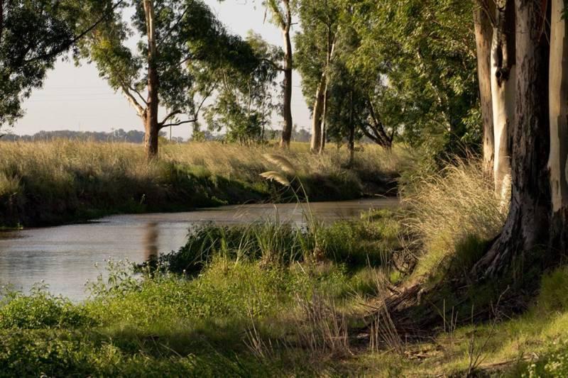 Foto Terreno en Venta en  Coronel Brandsen,  Coronel Brandsen  La Reserva Escondida - Ruta 2 km 64 al 100