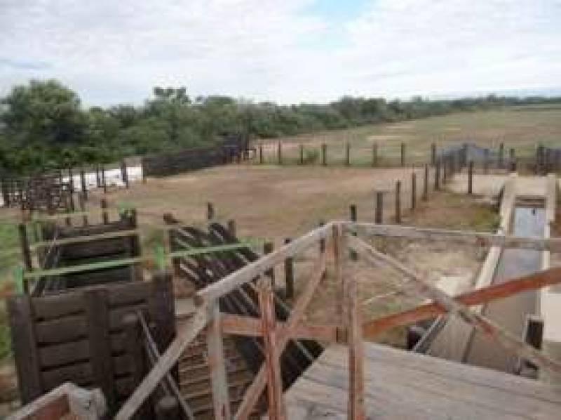 Foto Campo en Venta en  Figueroa ,  Santiago Del Estero  1 1